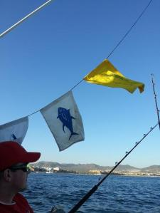 Returning with 3 banners up - one dorado, 2 tuna