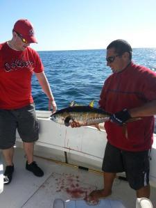 Ryan's tuna