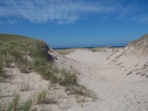 dune du nord