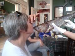kiss the cod2