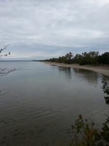 Lake Ontario shore at Sand Banks