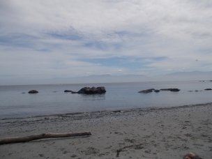 The beach at East Sooke.