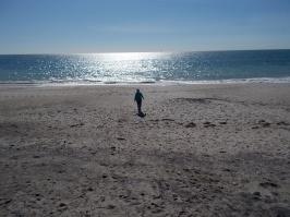 Doheny public beach 3