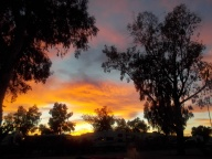 Red sky in Picacho