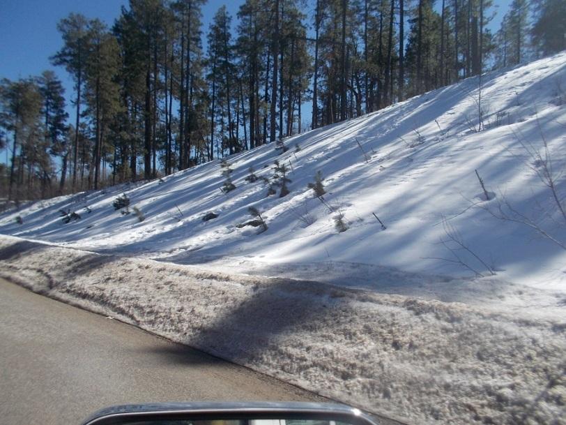snow near Sedona