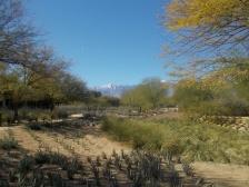 sunnylands 5