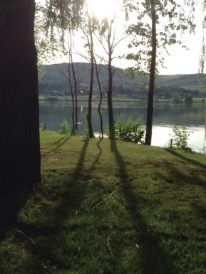 swan lake 2