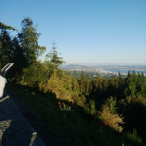 Vancouver from Cypress mountain