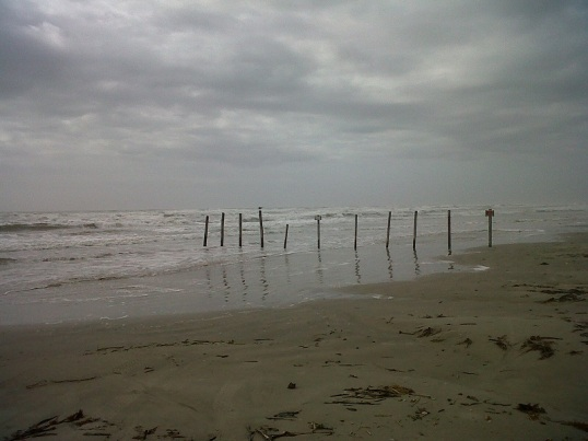 galveston surf3