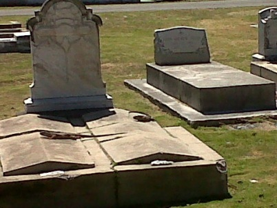 iguanas on the gravestones