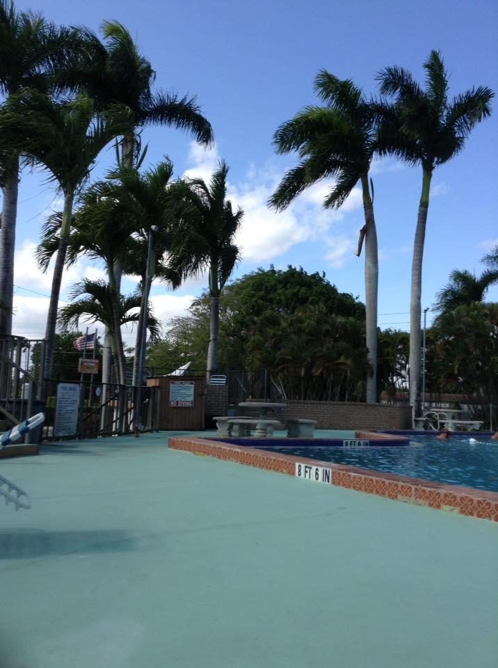 pool in Homestead