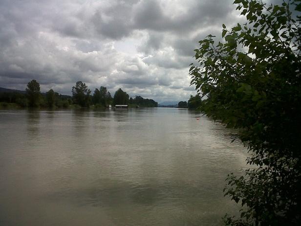 Fraser river Ft. Langley June 2017
