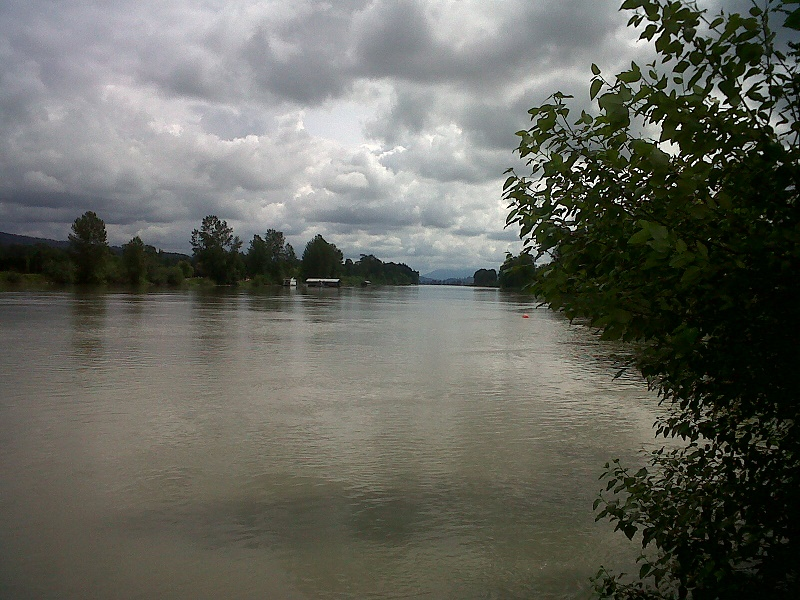 Fraser river Ft. Langley June 2017
