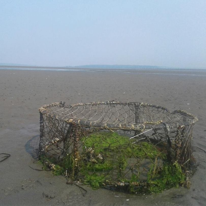 crab trap at Centennial beach